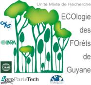 Ecologie des forêts de Guyane